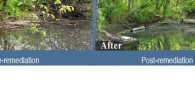 Before and after images of a remediated vernal pool