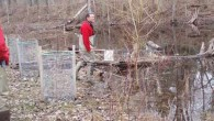 Workers documenting life in the vernal pool
