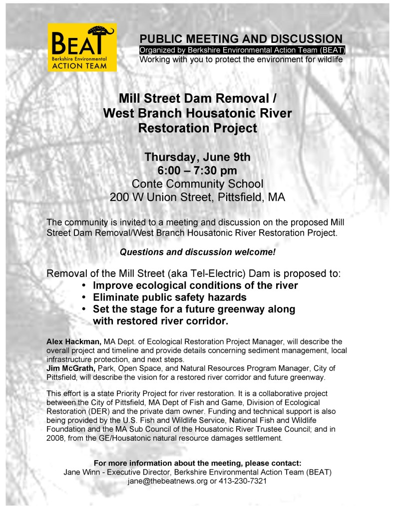 Mill St Dam meeting and discussion POSTER 3-page-001