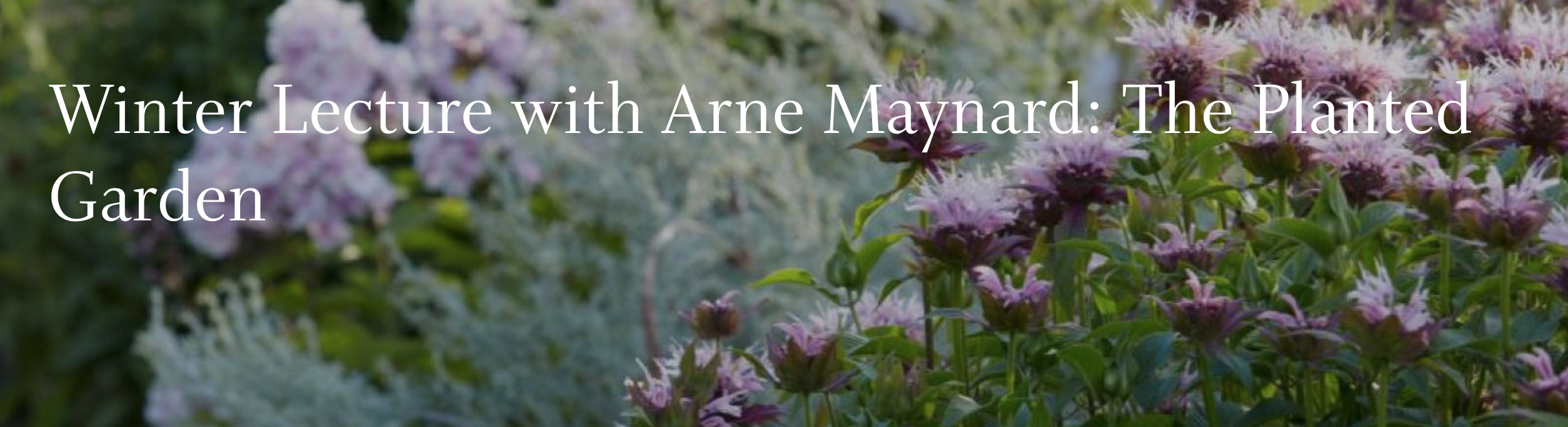 Winter Lecture With Arne Maynard The Planted Garden Berkshire